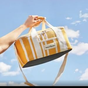 Brand new insulated tote bag for beach, lunch